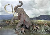 Giant Prehistoric Elephant Slaughtered by Early Humans