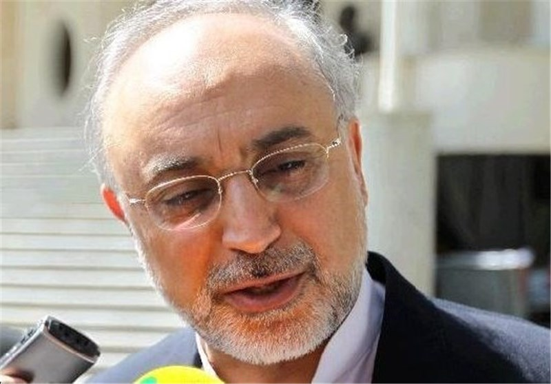 Salehi: Iran to Set UP New Nuclear Reactors