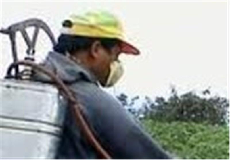 قانون حفظ نباتات بازنگری میشود