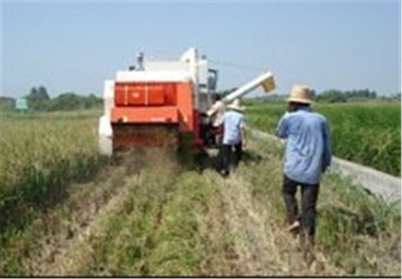 توسعه کشاورزی یزد منطقی نیست