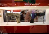 """آغاز """"نمایشگاه بینالمللی تجهیزات پلیس"""" از فردا"""