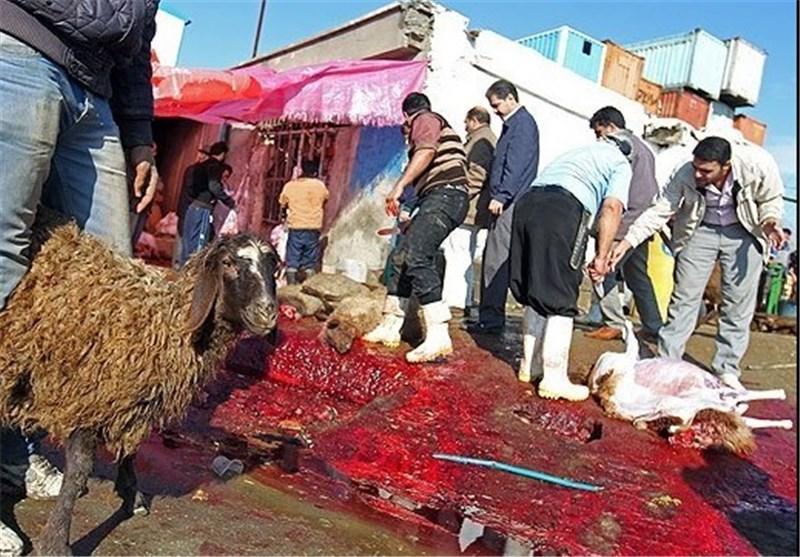قیمت کشتار گاو