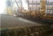 ضرورت گشایش اعتبارات ریالی برای خرید مواد اولیه فولاد