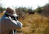 دستگیری شکارچیان متخلف در بردسیر