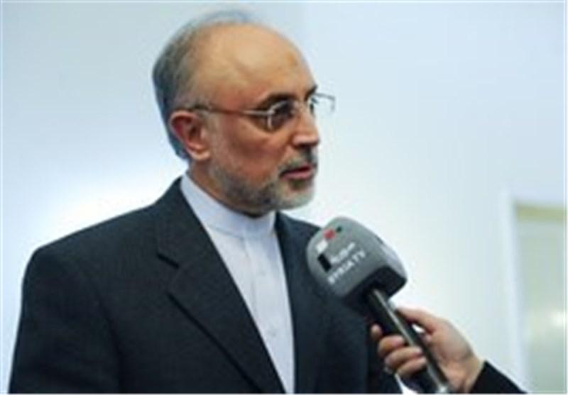 صالحی یعلن إحباط عدة عملیات تخریبیة ضد منشآت ایران النوویة خلال الایام الماضیة