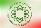 موافقتنامه تجاری با اورآسیا تمرینی برای گذار ایران به تجارت مدرن است