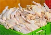 قیمت تمام شده مرغ در چهارمحال وبختیاری 9500 تومان است