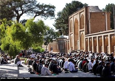نماز عید قربان-تربت جام