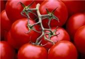 2700 تن محصول سالم کشاورزی در استان بوشهر تولید شد