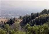 روزانه کامیون کامیون الوار از جنگلهای گلستان خارج میشود