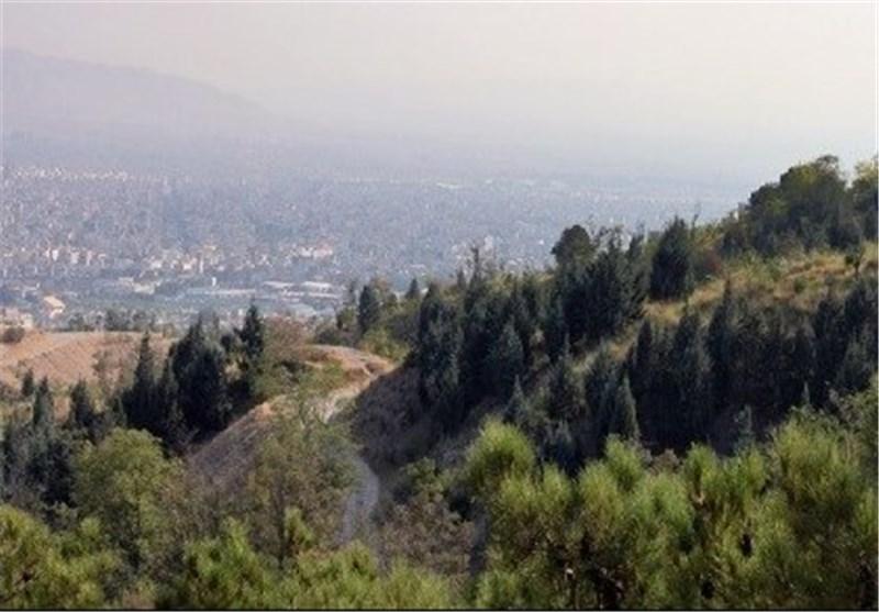 سرانه جنگل در اردبیل 500 متر مربع است