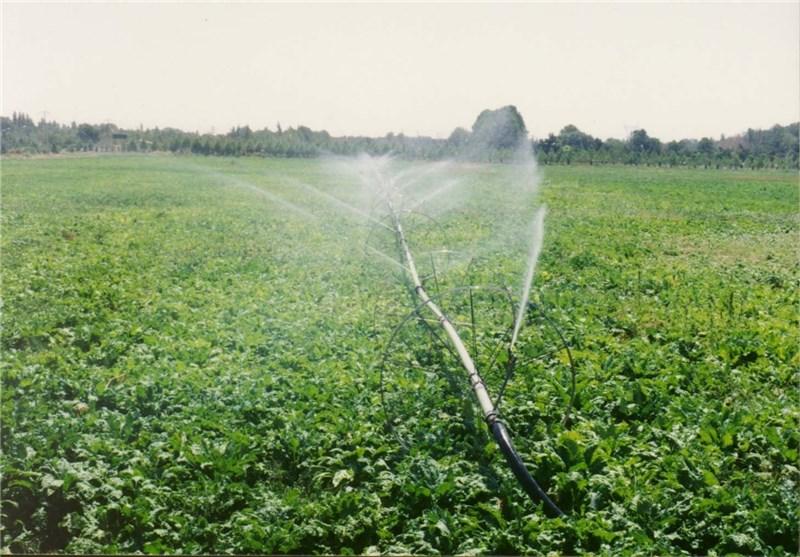 طرح مدیریت مزرعه در خاش آغاز بکار کرد
