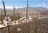 تهران| 70 درصد روستاهای کشور فاقد سند ثبتی است