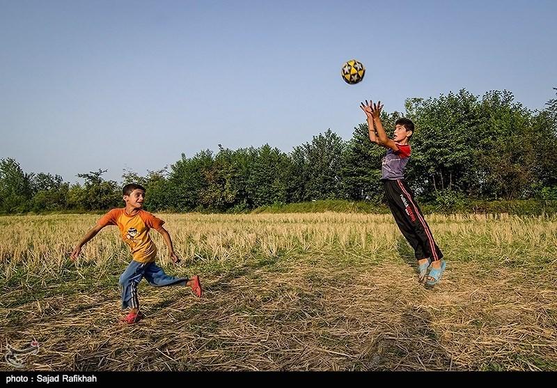 بازی کودکان در شالیزارهای برنج