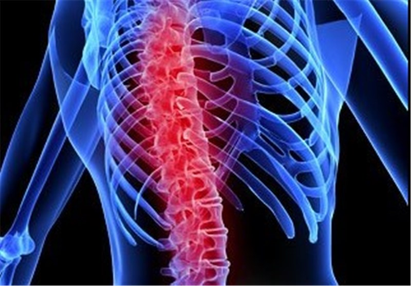 Spinal Circuitry Responsible for Chronic Pain Charted