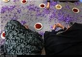 خراسان رضوی|پیگیری پرونده زعفران کاران گناباد/ دریافت وجه نقد در قبال سپرده زعفران