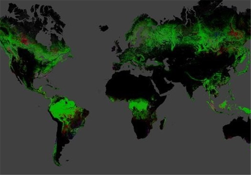 Vanishing Forests: New Map Details Global Deforestation