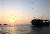 220 تن انواع ماهیان استخوانی در سواحل رودسر صید شد