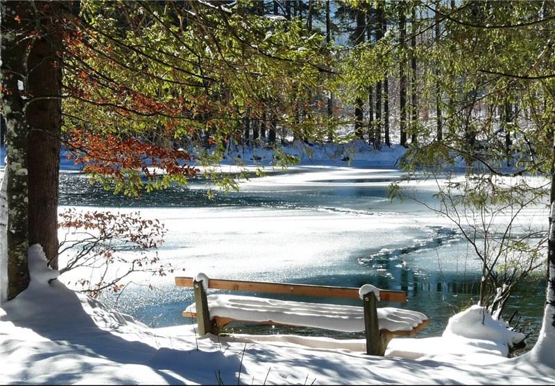 تغذیه زمستانی از نگاه طب سنتی