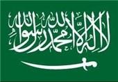 عربستان سفیر خود را از سوئد فراخواند