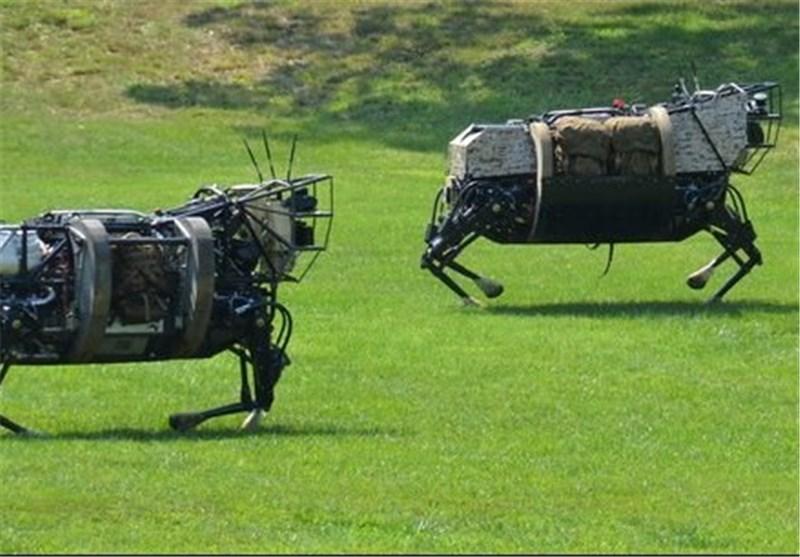 روبات ها