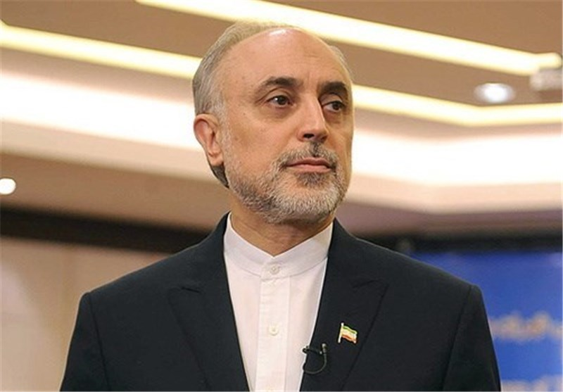 AEOI Chief Rejects Reports on Slowdown in Iran's Nuclear Activities