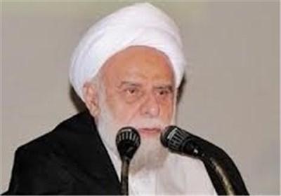 آیت الله امینیان/ خبرگان رهبری