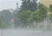 بارندگی به کشاورزی جیرفت خسارتی وارد نکرده است