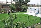 10 زمین چمن مصنوعی به سرانه ورزشی البرز اضافه میشود