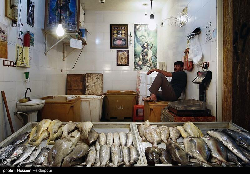 Image result for ماهی فروشی بوشهر