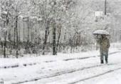 بارش نخستین برف زمستانی مردمان کرمان را شادمان کرد