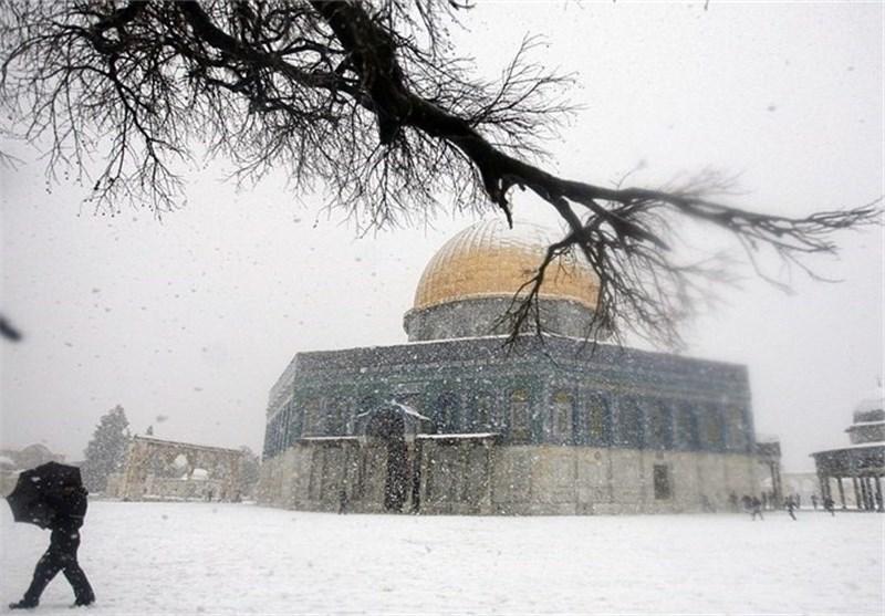 عبدالمجید عمار: میخواهند با اختلافافکنیهای مذهبی مسلمانان را ازفلسطین غافل کنند