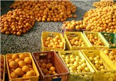 صادرات 4 هزار تن محصولات کشاورزی از مهران به عراق