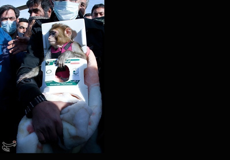 Photos: Iran's Second Space Monkey Returns to Earth Safe