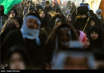 Photos: Shiite Muslims' Walking from Najaf to Karbala