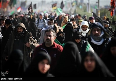 Photos: Shiite Muslims' Walking from Najaf to Karbala