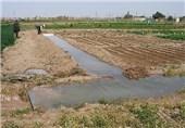 واکاوی کاهش همه ساله آب کشاورزی در میاندوآب
