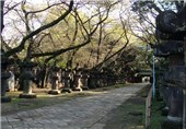 Japan PM Sends Offering to War Dead Shrine, Angering China
