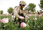 آمریکا از توافق امنیتی با افغانستان به دنبال حفظ بازار مواد مخدر است