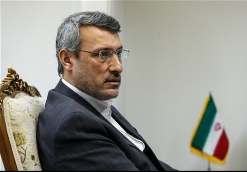 Iranian Nation Ready to Help US Address Hunger: Envoy