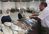بازار ماهیفروشان کیش با اعتبار 8.5میلیارد ریال افتتاح شد