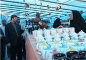 افتتاح نمایشگاه صنایع دستی و سفال هنرمندان دشتستانی