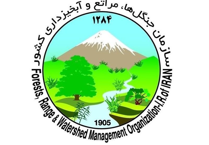 آرم سازمان جنگل ها، مراتع و آبخیزداری(منابع طبیعی)
