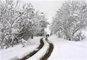 بارش برف در شهرضا به 20 سانتیمتر رسید
