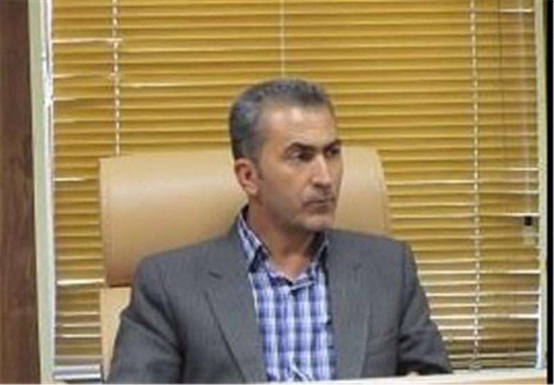فعالیت 10 کمیته تخصصی برگزاری برنامه های دهه فجر در ایلام