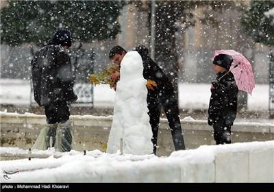 بارش برف در شیراز