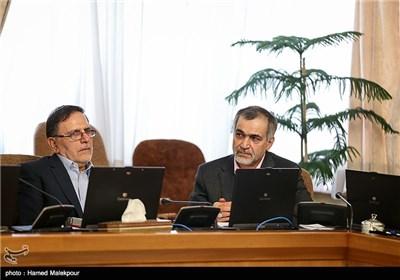 حسین فریدون دستیار ویژه رئیس جمهور و ولی الله سیف رئیس کل بانک مرکزی در جلسه هیئت دولت