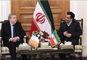 Iranian, Irish MPs Urge Closer Bilateral Relations
