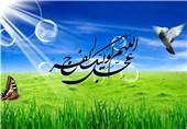 شعر مخاطب تسنیم در پاسخ به شعر رهبر انقلاب برای امام زمان(عج)