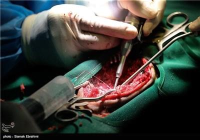 عمل جراحی ستون فقرات پلنگ خرم اباد